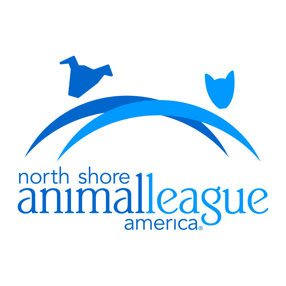 Charity Spotlight: North Shore Animal League