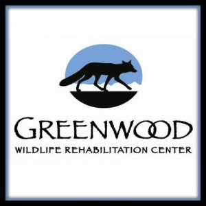 greenwood, car donation, donate a car, donating your car, car donations