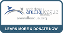 north shore animal league america learn more and donate